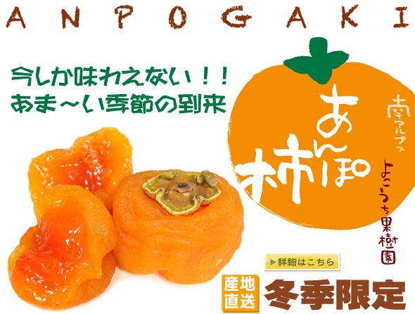 あんぽ柿通販